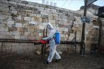 وزيرة الصحة الفلسطينية: تسجيل ٤ إصابات جديدة بفيروس كورونا في رام الله والخليل