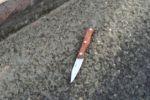 الاحتلال يعتقل فلسطينيا بذريعة حيازته سكينا بالخليل