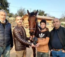 عضو الاتحاد الفلسطيني للفروسية ضرغام اقنيبي يزور مركز فرسان الخليل
