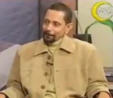 ربيع النكبات ....عبدالناصر النادي