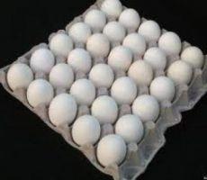 إحباط محاولة تهريب 6 آلاف طبق بيض إلى مستوطنة
