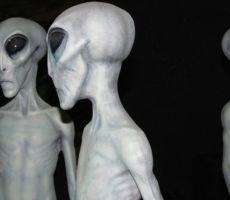عالمة فضاء بريطانية: الكائنات الفضائية حقيقية وتعيش بيننا على الأرض