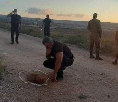 غانتس يدفع بتعزيزات- اسرائيل تفحص قيام سجانين بمساعدة الأسرى على الهرب