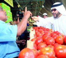 الأردن يصدر 900 طن من الخضروات والفواكه يوميا إلى الخليج