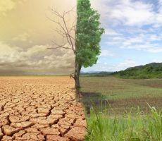 تقرير لمركز معا: التغيرات المناخية تؤثر على الصحة النفسية