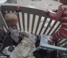 فيديو طريف لطفل يخطط لإخراج شقيقه من سريره ..حاز على 15 مليون مشاهده