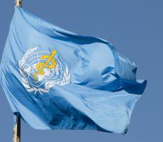 تحذير عاجل من الصحة العالمية للمصريين