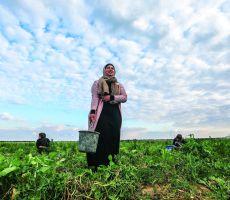 يوم المرأة العالمي.. النساء في مقدمة المواجهة مع الجائحة