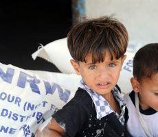 الاونروا : أكثر من مليون شخص في غزة ، يشكلون أكثر من نصف عدد شكان القطاع، قد لا يكون لديهم طعام كاف بحلول حزيران
