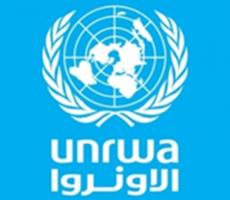 للسنة الثالثة على التوالي، الصين تقدم الدعم لبرنامج الأونروا للمعونة الغذائية في غزة