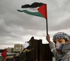 حين كانت فلسطين محتلة!  ....جواد بولس