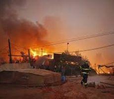 وحدة الطائرات الحارقة تنفذ تهديداتها وتشعل غابات وحقول مستوطنات غلاف غزة