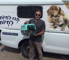 'علاج قطة' في إسرائيل يثير الجدل في غزة