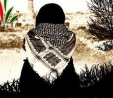 الأمن الاعلامي الفلسطيني بين النظرية والتطبيق  (1)...  بقلم:ماجد هديب