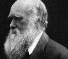 تركيا تطرد داروين من مدارسها