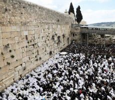 مئات المستوطنين يقتحمون حائط البراق