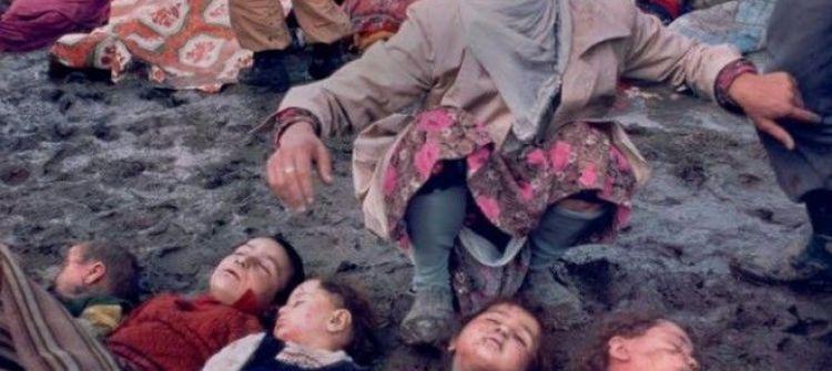 غزة ..لا تستجدي أحدا!/عبد الهادي شلا