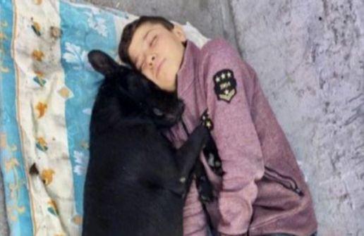 بالصورة- طفل سوري لاجئ في 'حضن' كلب