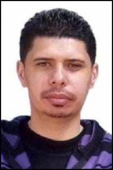 كلمات بعنوان : 'دا .. عش' الدبابير !...محمد حلمى مصطفى