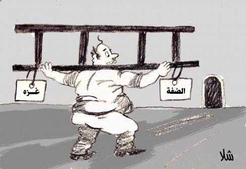 كرتون - السلم بالعرض !!...عبد الهادي شلا
