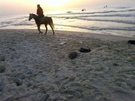 أنقذوا بحر غزة /توفيق أبو شومر
