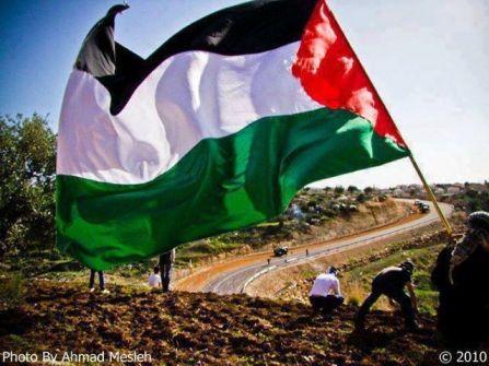 فلسطين ، طريق العرب نحو الصحوة/ بقلم سمير حباشنه