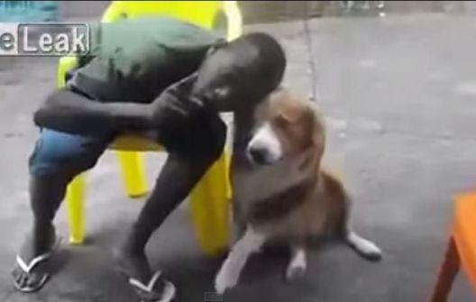 شاهد: كلب يعض شاب حاول التقاط صورة سيلفي معه