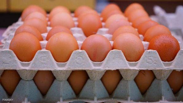 'كرتونة البيض'.. قصة الاختراع الذي حقق 8 مليارات دولار