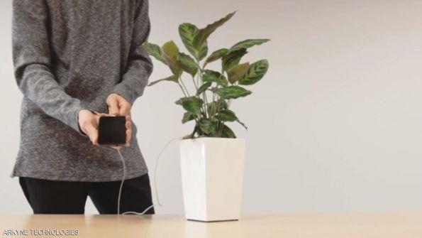 النباتات مصدر جديد لشحن الهواتف الجوالة