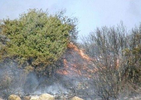 الدفاع المدني: 88 حريقا خلال الساعات الـ24 الماضية