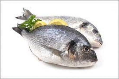 اتلاف 800 كغم من الاسماك الملوثة في رام الله