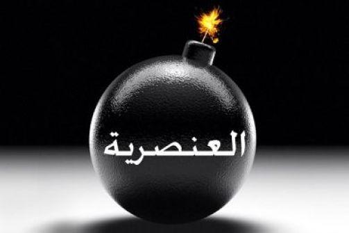 مدخلة إلى العنصرية... بقلم: محمد عودة الله