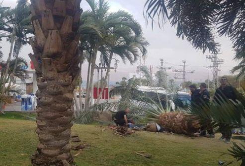 مصرع عاملين أردنيين في إيلات