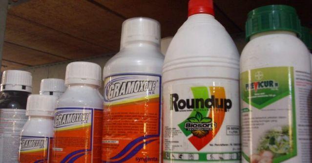 كرزم يحذّر: المبيدات 'المسموحة' تستبيح أجسام  أطفالنا...