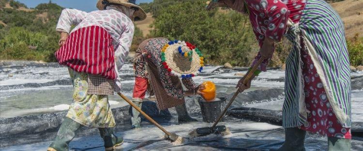 نساء 'الذهب الأبيض' في المغرب لا ينالهن من اسم مهنتهن أي نصيب.. تعب وشقاء ثم بيع متواضع