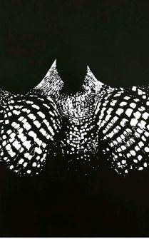 التوليدية في الحراك المصمت للفنان بشير أحمد..  بقلم: زياد جيوسي