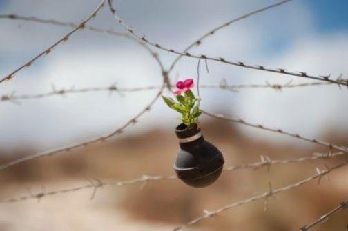 مأساة وطن : ارض وبحار الموت والهلاك !! ...د.شكري الهزَّيل