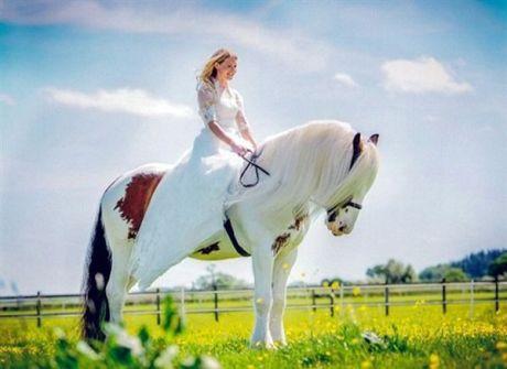 فتاة تنقذ حصان وتمتطيه في حفل زفافها