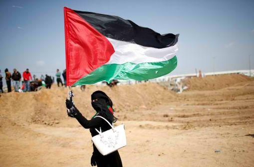 المرأة الفلسطينية  أيقونة النضال الوطني الفلسطيني... د. باسم عثمان