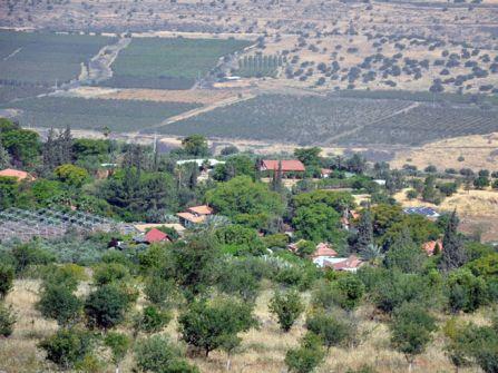 سوريا تدين الإجراءات الإسرائيلية في الجولان وتجدد دعمها للاضراب