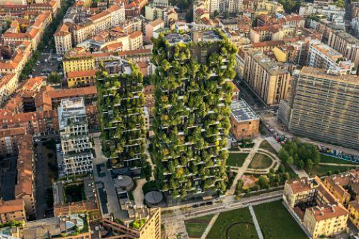 الغابات في المناطق الحضرية: مستقبل المدن حتّى في النواحي الجافة والحارّة