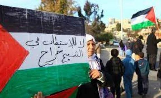 الاحتلال يقمع تظاهرة في الشيخ جراح ويعتقل عددا من المشاركين
