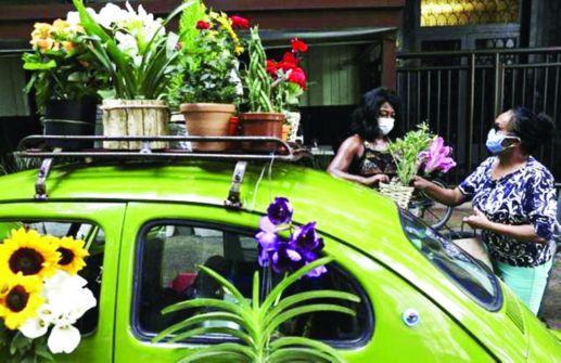برازيلية تتحدى «كوفيد 19» بالأزهار