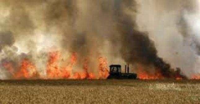 هآرتس: 29 حريقاً في غلاف غزة نتيجة الطائرات الورقية