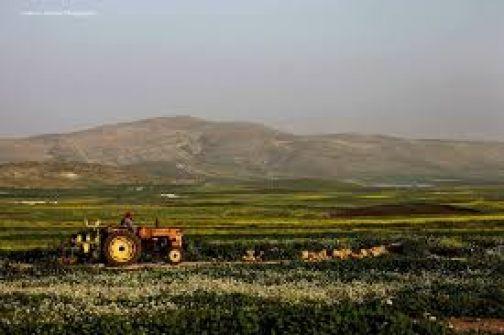 الرئاسة الفلسطينية تُحذر من عشرة أيام حاسمة