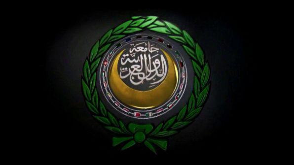 الأمين العام للجامعة العربية: الهجوم التركي في سوريا 'غزو لأراضي دولة عربية'