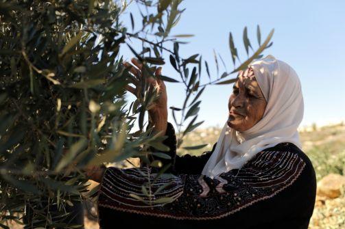 لجنة أممية قدمت 17 طلبا لإسرائيل لحماية الفلسطينيين