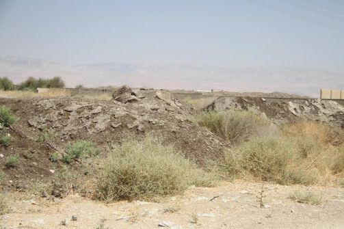 كرزم يحذر: كميات ضخمة من النفايات العضوية الإسرائيلية تُلْقَى في الأغوار، وتعرّض أطفال المنطقة لجفاف فجائي ومشاكل تنفسية