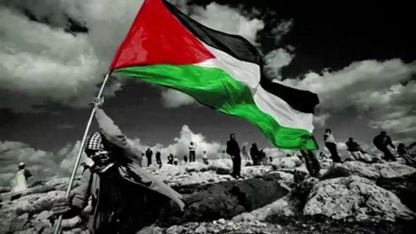 فلسطين والسلام من فلسطين....  احمد دغلس